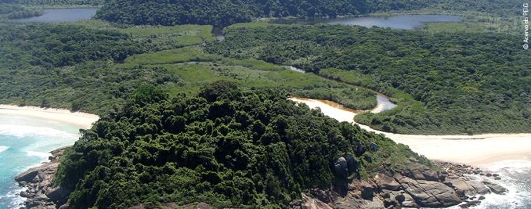 Área de preservação permanente do Parque Estadual da Ilha Grande